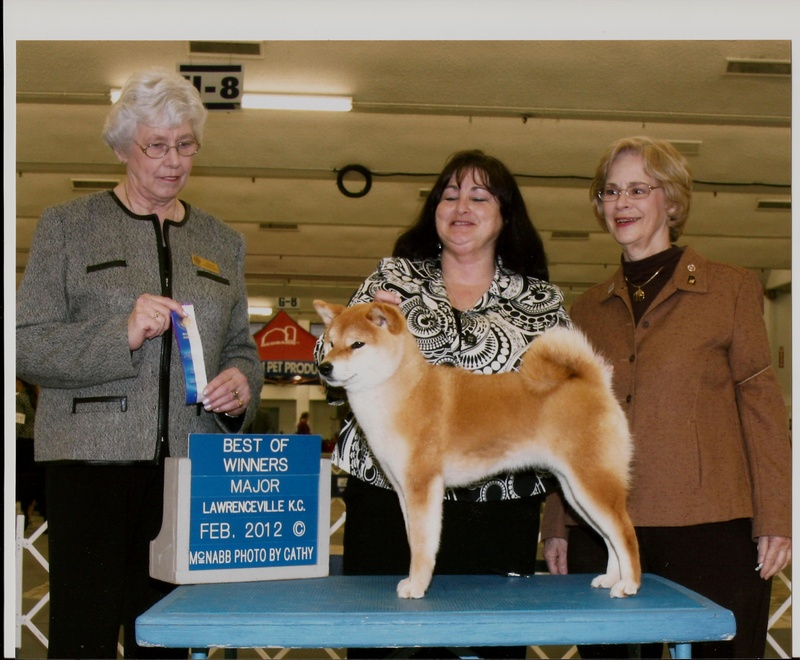 GCH Showboat Zeda Jones